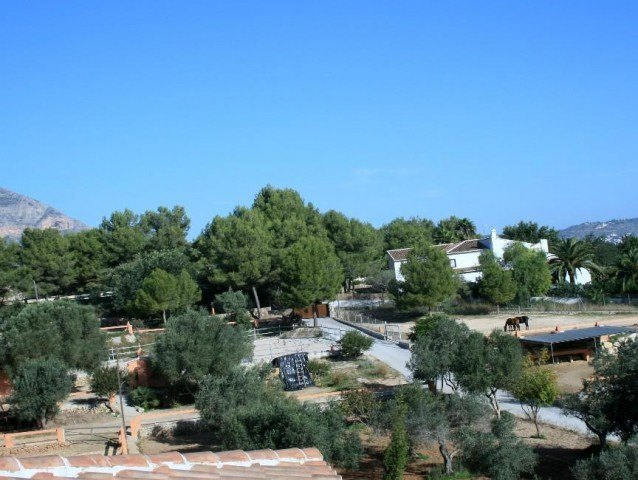 Exclusive Villa with Stables & Horses
